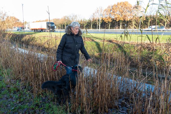 Odette Dankaart laat haar hond Chouchou uit.