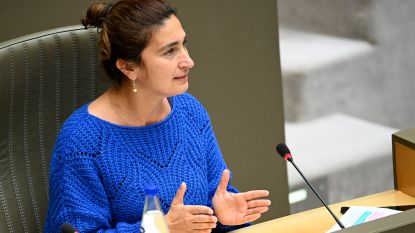 """Zuhal Demir: """"Extra rechters moeten zorgen voor snellere behandeling beroepsprocedures"""""""