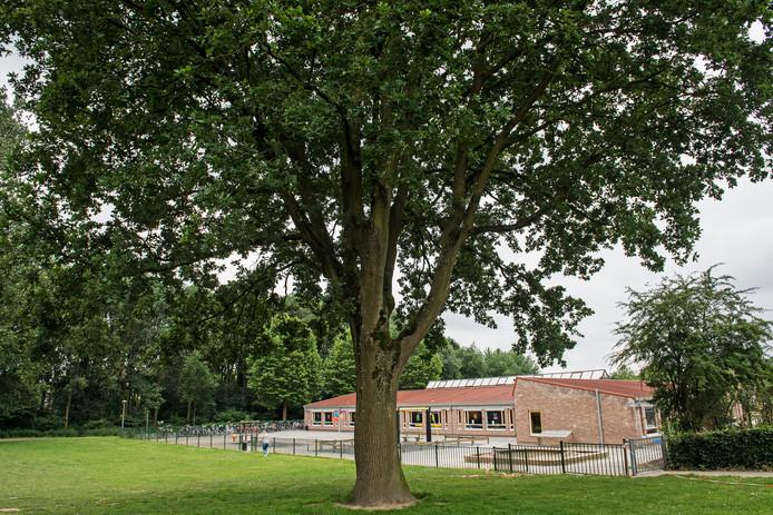 Het lege schoolplein van De Sieppe.