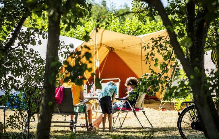 Vakantiegangers vermaken zich op camping De Duinhoeve in Burgh-Haamstede.  Beeld ANP