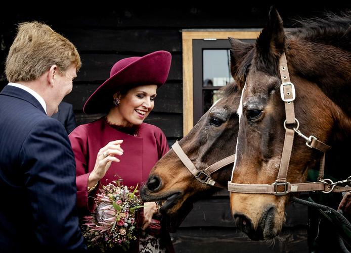 Ex-politiepaard Fortuin hapt naar het boeket van koningin Máxima tijdens het streekbezoek in 2017.