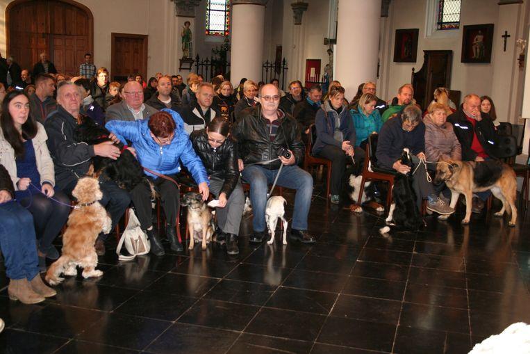 Heel wat honden met hun baasjes in de kerk van Kapellen