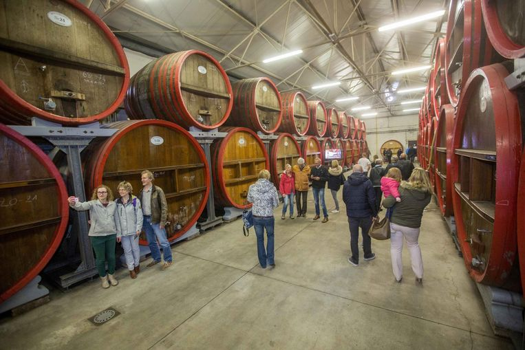 Bezoekers ontdekken de Lembeekse brouwerij Boon.