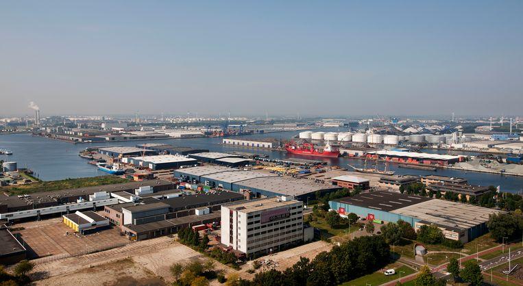 Het Westelijk havengebied (Westpoort) gezien van het dak van het Reedgebouw. Beeld Olaf Kraak