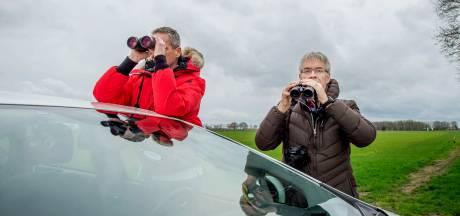 Strijden voor de patrijs in Maas en Waal: 'Er zijn er nog maar een paar'