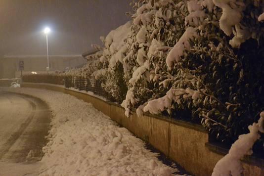 In het getroffen gebied bedekt een dikke laag sneeuw wegen en bomen.