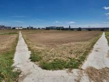 Stuk Natura 2000-gebied Tichelbeeksewaard bij Zutphen platgemaaid: 'Dit is niet per ongeluk gebeurd'