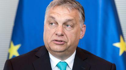 """Premier Orbán misbruikt coronacrisis om zichzelf absolute macht te verlenen: """"Hongarije is vanaf nu een dictatuur"""""""