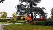 """Personeel psychiatrisch ziekenhuis na moord op Lesley Swolfs: """"Slechte reacties en verwijten raken ons diep"""""""