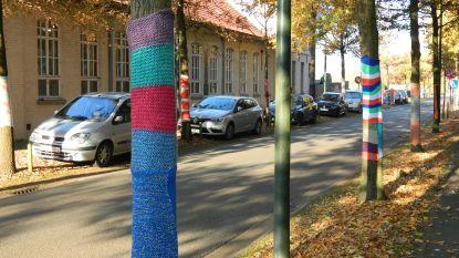 Ingepakte bomen voor trager verkeer aan Taborschool