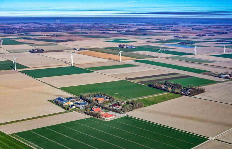 Windmolens bij Biddinghuizen, met helemaal links het erf van Wilfried Groot Koerkamp. Beeld Raymond Rutting / de Volkskrant