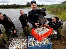 Mannen die golfballen opduiken uit vijver op de bon