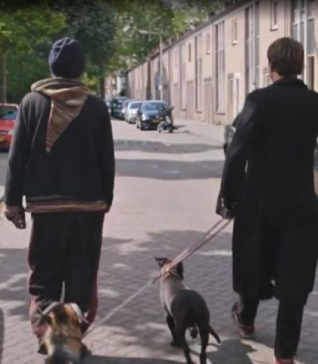 Tiwos meldt: 'Woonsituatie van Rigo in Tilburg gered, alle dieren weg'