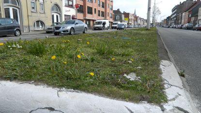 Stad voorziet plots toch 100.000 euro voor herinrichting N9