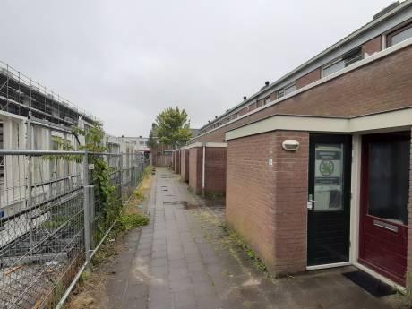 Hennepkwekerij bij de buren wekt al verbazing maar wáár stonden die planten?
