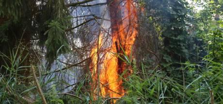 Brandweer kan bosbrand niet vinden in Boxtel