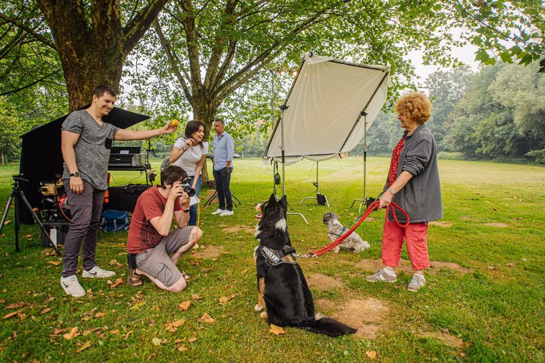 """Vanochtend konden hondenbaasjes een foto laten maken met hun viervoeter in het Dielegembos in Jette. Op elke foto staat de waarschuwing: """"Laat dit niet jouw laatste foto zijn""""."""