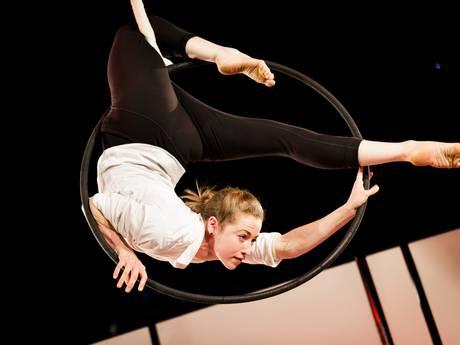 Circusstad: zoveel te zien én te doen