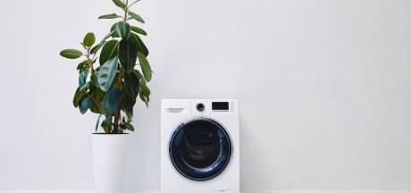 Snekers stelen witgoedapparaten van overleden buurvrouw