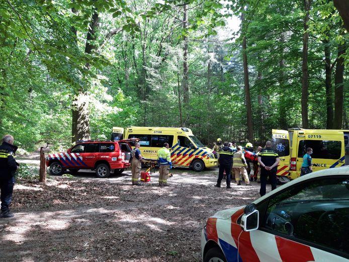 In het Lunterse Buurtbosch zijn na een zoekactie twee gewonde mensen gevonden. Mogelijk zijn zij van een paardenwagen gevallen.