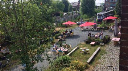 """Augustus vol events in Groenlaan: """"Boeren-, rommel-, boeken- én keramiekmarkt"""""""