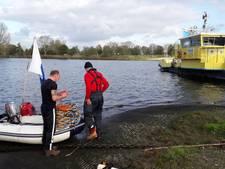 Duiker poetst detectoren in Maas bij Megen op