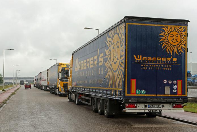 Buitenlandse vrachtwagens parkeerden  eerder aan de Blankenweg in Bergen op Zoom omdat elders geen plek was.
