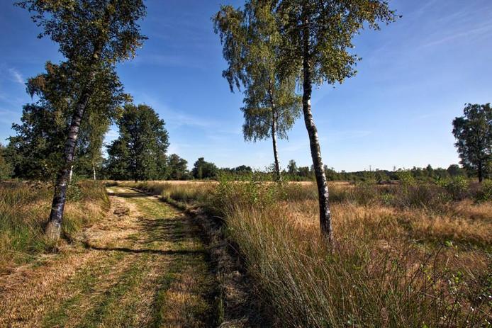 Natuurgebied Kortenhoeff. Johan Wouters pix4profs