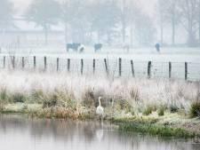 Prachtige winterse landschappen na eerste nacht matige vorst dit najaar