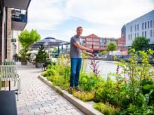Deal met TU Delft, permanent Keukenhof en een kwekerswinkel: het Alphense centrum wordt nu écht groen
