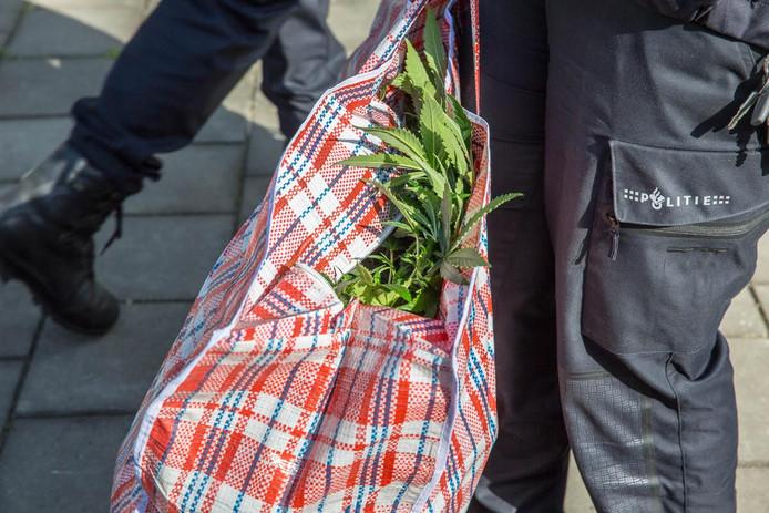 Er werd ook een hennepkwekerij gevonden tijdens de grootschalige controle in Roosendaal.