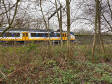 Treinverkeer rond Deventer wordt voor niks twee uur stilgelegd: 'Loos alarm'