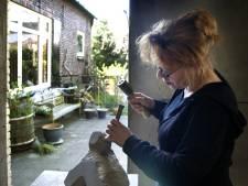 Nieuwe kunst- en cultuurprijs in Meierijstad