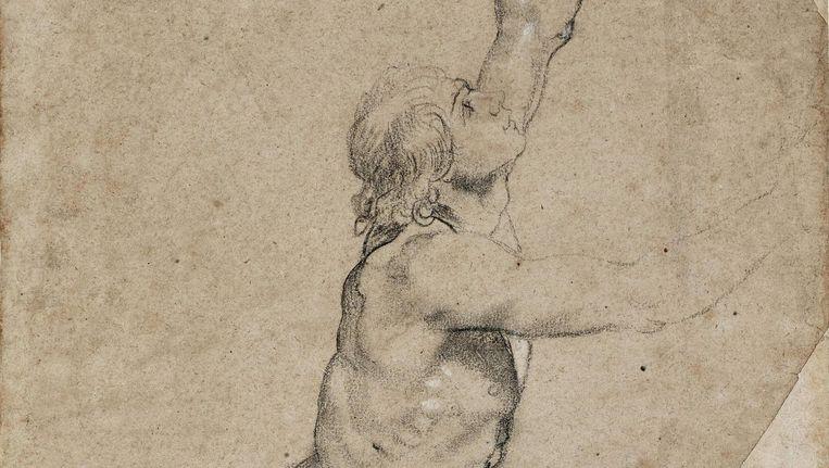 De tekening in houtskool van Rubens was een voorstudie voor een altaarstuk uit 1608 Beeld Sotheby's