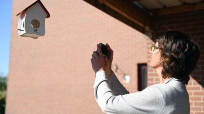 """Juf Bieke maakt fotozoektochten voor inwoners van Herent: """"Ideaal voor een leuke en interactieve wandeling met de kinderen"""""""