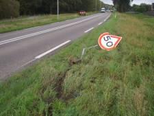 Vrouw botst op verkeersborden in Abbenbroek
