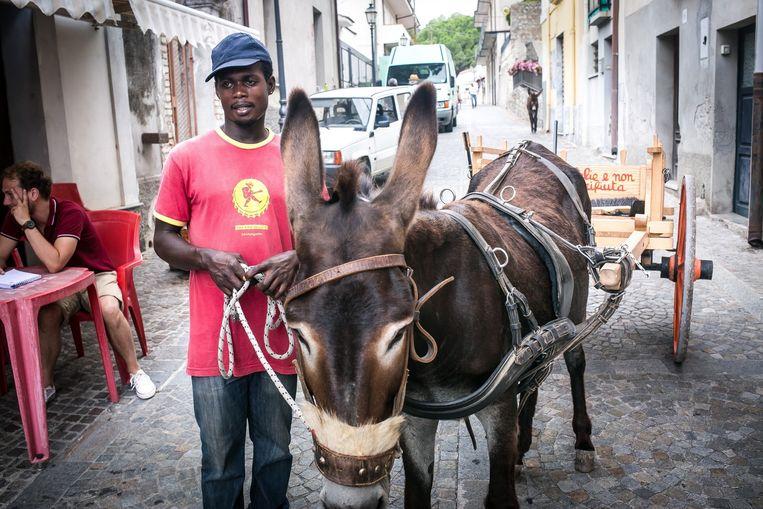 Een migrant gaat met een ezel de stad rond om het vuilnis op te halen. Beeld Nicola Zolin