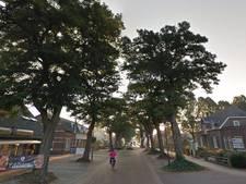 Rooien van bomen in centrum Schaijk mag door: kort geding blijkt kansloos