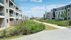 Van 80 assistentiewoningen naar 56 eengezinswoningen: gemeente reduceert bouwvolume op Hippodroomsite
