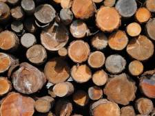 CDA Boxtel vraagt om helderheid over biomassa