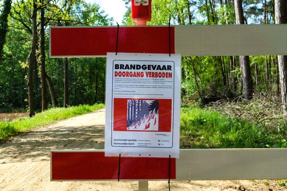 De burgemeesters van Zandhoven, Grobbendonk en Vorselaar hebben beslist om natuurgebied De Lovenhoek volledig te sluiten vanwege brandgevaar.