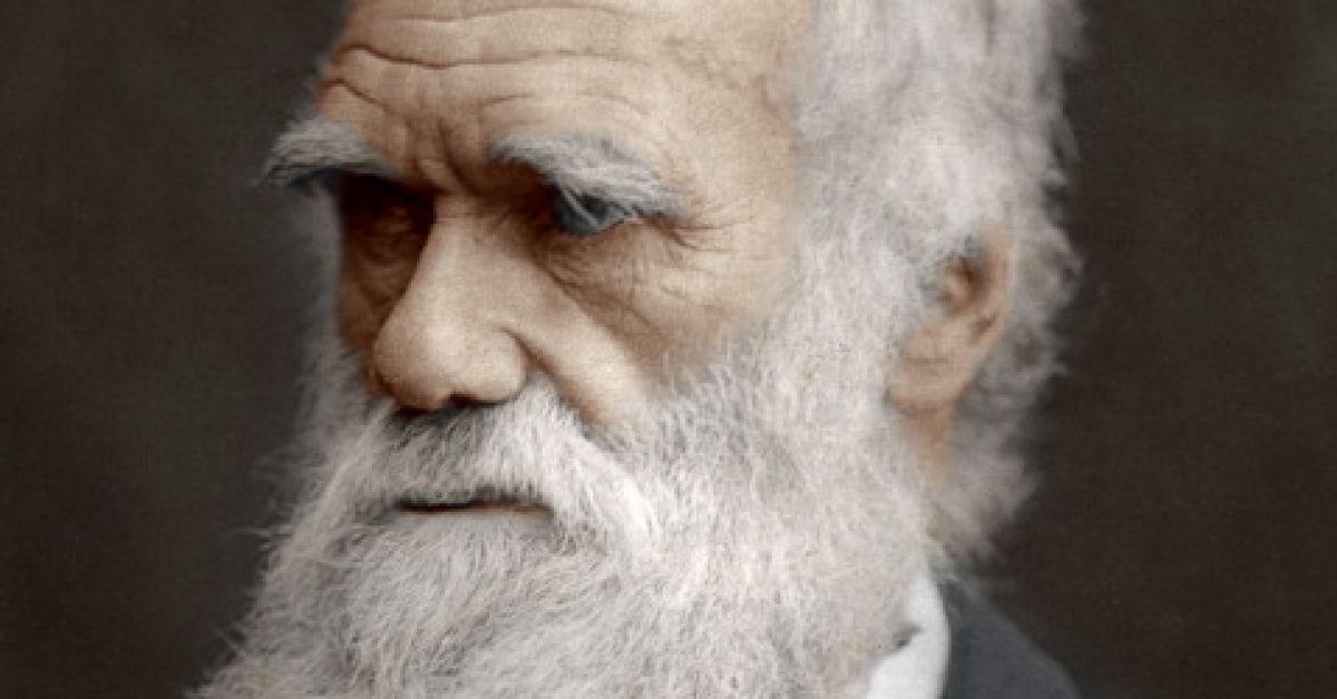 We begrijpen Darwin nog altijd verkeerd: dit zijn de 5 grootste misverstanden
