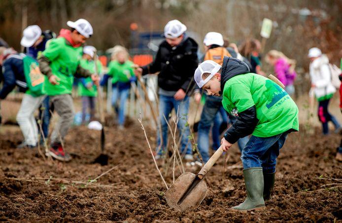 Niet alleen op de Nationale Boomfeestdag, maar veel vaker plant de gemeente bomen.