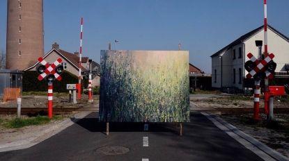 Werken van Antwerpse kunstenaar duiken op in Hamont-Achels straatbeeld