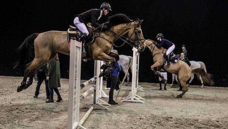 De warming-up van paarden en ruiters op Jumping Amsterdam Beeld Amaury Miller