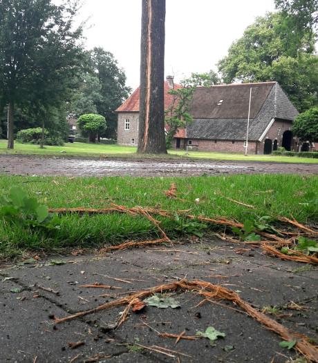 Bliksem slaat in boom bij De Meijer Neede