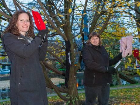 'Hopelijk wordt er meer winterkleding in bomen gehangen'
