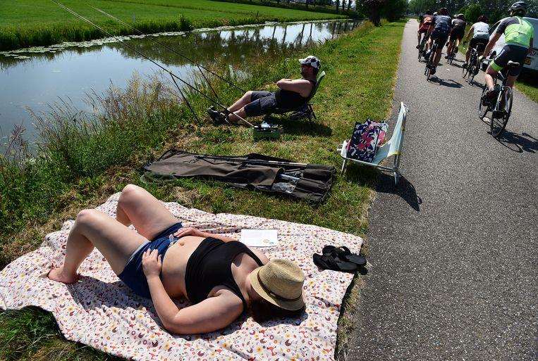 Ook in Beesd, Gelderland, liep de temperatuur op tot tropische waarden. Beeld Marcel van den Bergh / de Volkskrant