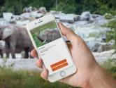 Nieuwe app Beekse Bergen vertelt welke dieren je ziet op safari