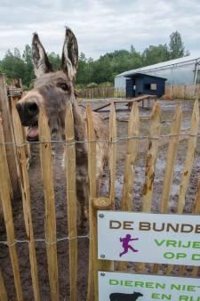 Zorgtuinderij De Bundertjes in Helmond gooit deuren open na metamorfose